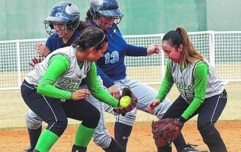 Girls Softball Hits it Hard in the Ballpark